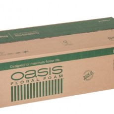 Oasis Steckschaum