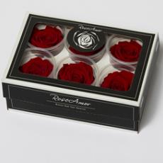 Stabilisierte Rosen