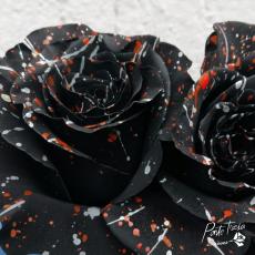 Gefärbt Confetti schwarz / weiss